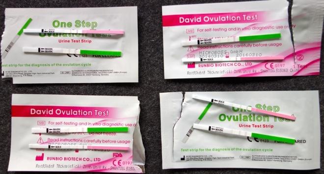 Ovulationstest Positiv Schwangerschaftstest Negativ